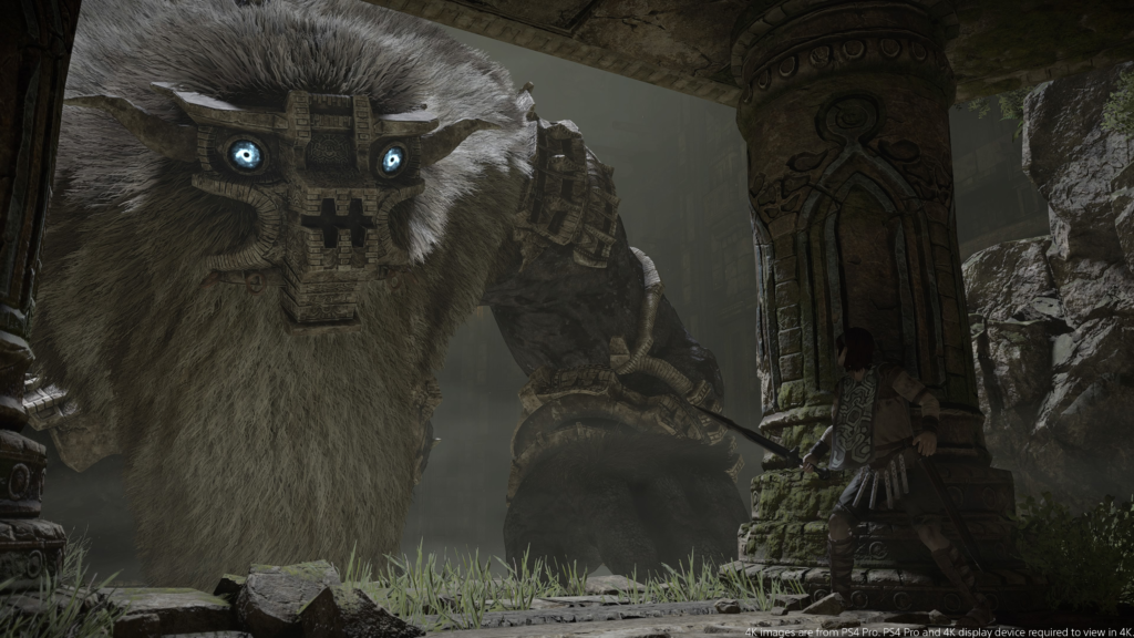 Shadow of the Colossus – Der sechste Koloss, Barba